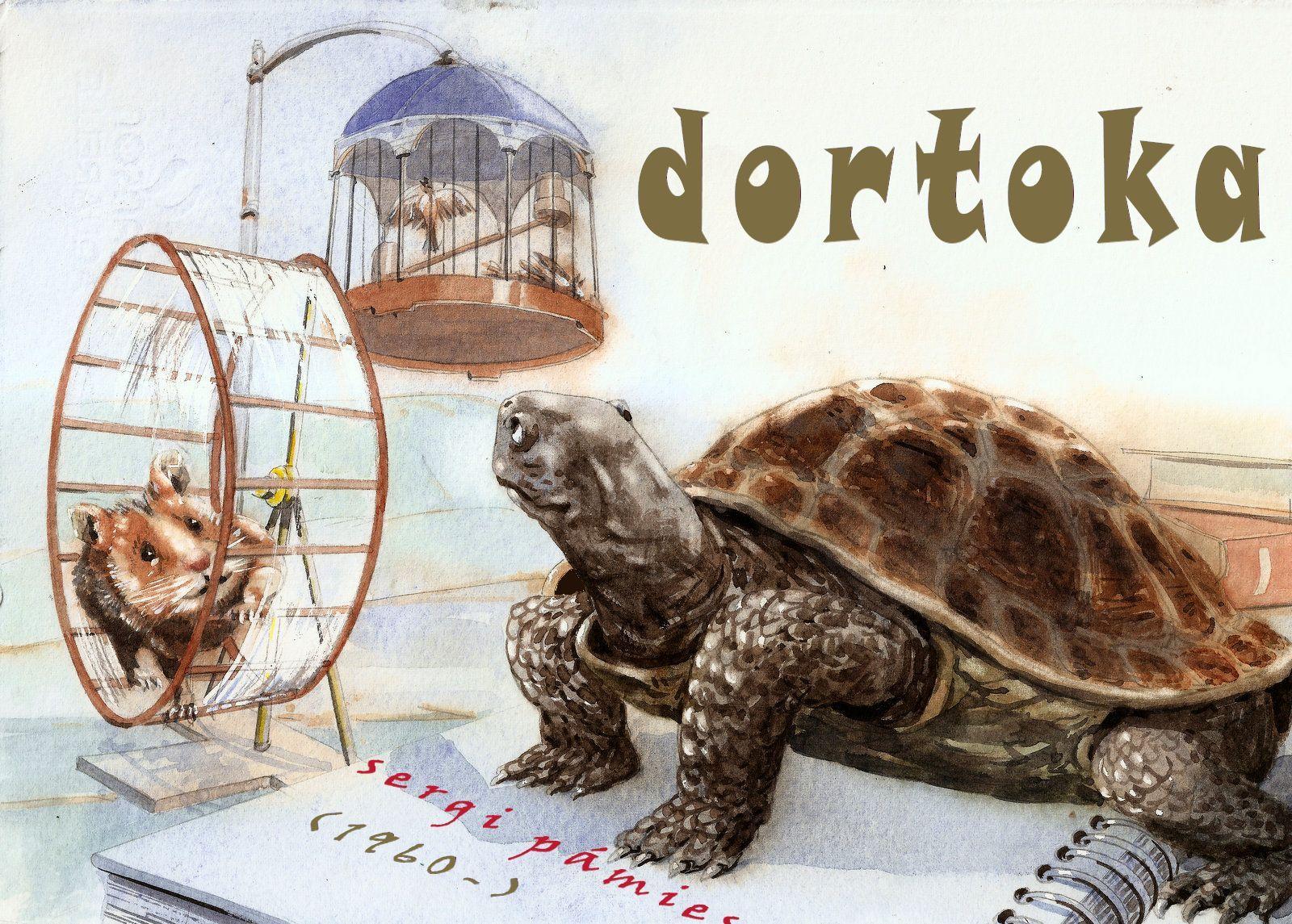 Dortoka